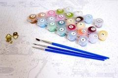 Набор для рисования картины по номерам (краски и кисти)